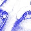 Cat_Sketch_00