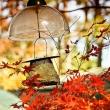 fall_series_00