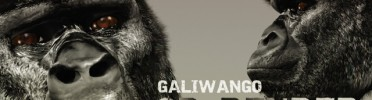 Galiwango Film to be Screened in Sweden, Mar 23-28th
