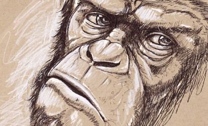 Drawing ~ Chimpanzee, Caesar